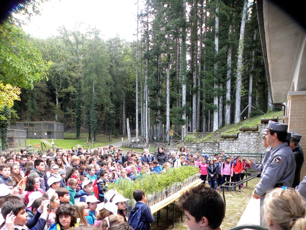 Riserva MAB - Feste delle foreste